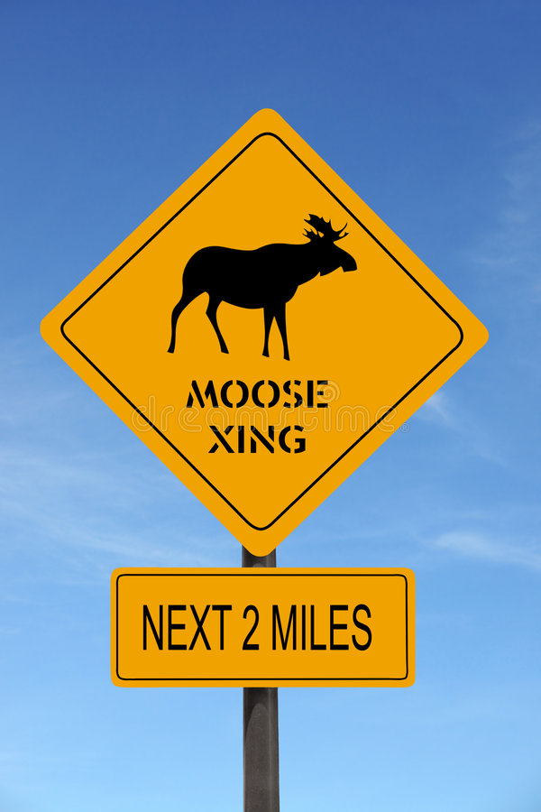 Moose Xing warning roadsign stock photography