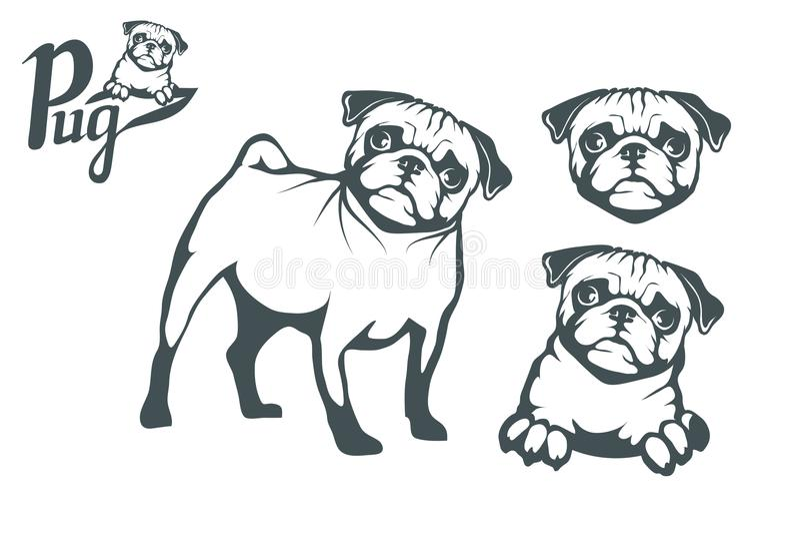 Mopsa psa set Głowa mops royalty ilustracja