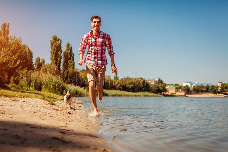 Mopshund som spelar med förlagen vid floden Lycklig valpspring och hagyckel Pursueing man för hund utomhus fotografering för bildbyråer