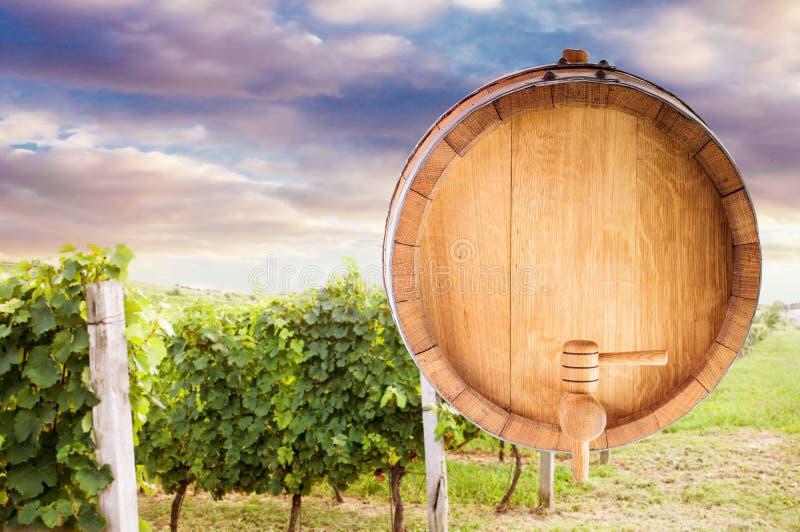 Moquerie de baril de vin  photographie stock libre de droits