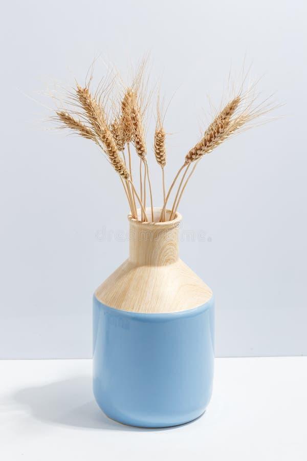 Moquerie vers le haut des épillets de blé dans le vase bleu sur les étagères à livres ou le bureau Concept de Minimalistic photo libre de droits