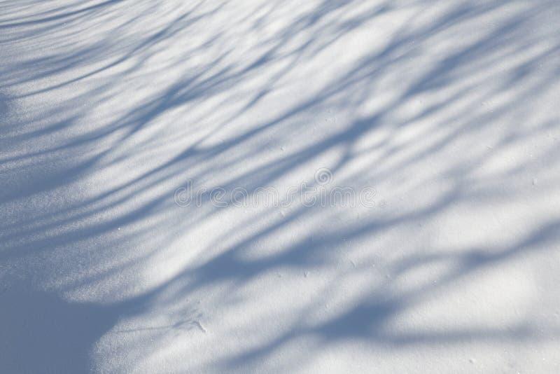 Moquette della neve fotografia stock