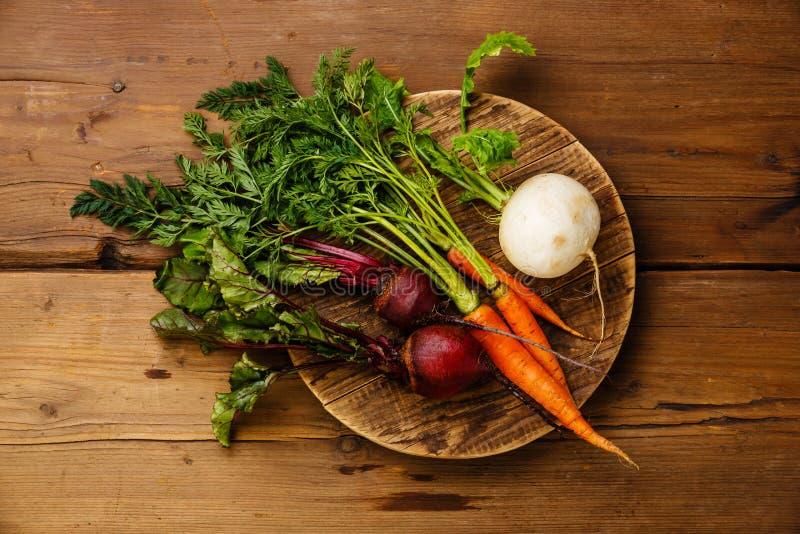 Morötter, rova och beta för nya grönsaker arkivbilder