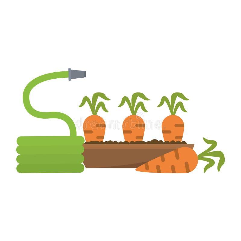 Morötter skörd och slang stock illustrationer