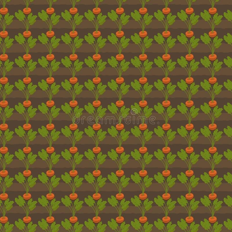 Morötter som växer i trädgården stock illustrationer