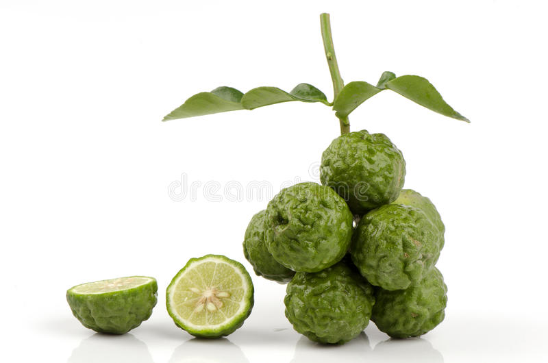 Mor-krut thai namn eller Kaffirlimefrukt- eller blodigellimefrukt eller Mauritius Papeda eller Bergamot. (Citrus hystrixDC.) Rutac arkivfoton