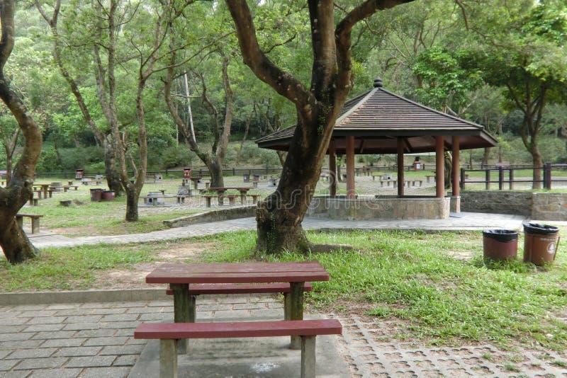 Mor på Shan Country Park Hong Kong arkivbilder