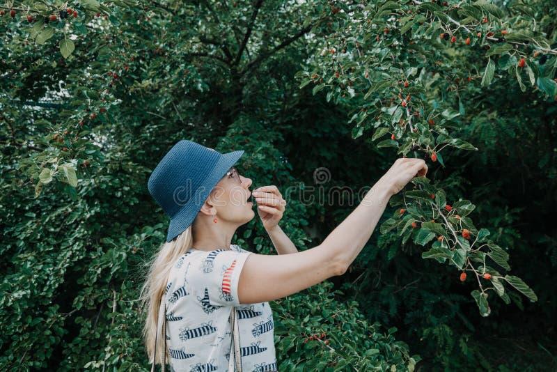 Mora de rasgado rubia joven del árbol foto de archivo