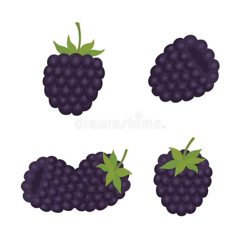 mora Frutta dolce Bacca della foresta Le icone di vettore hanno impostato illustrazione di stock