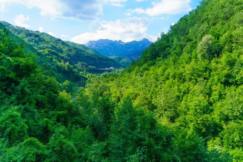 Moraca峡谷和Moraca修道院 免版税库存照片
