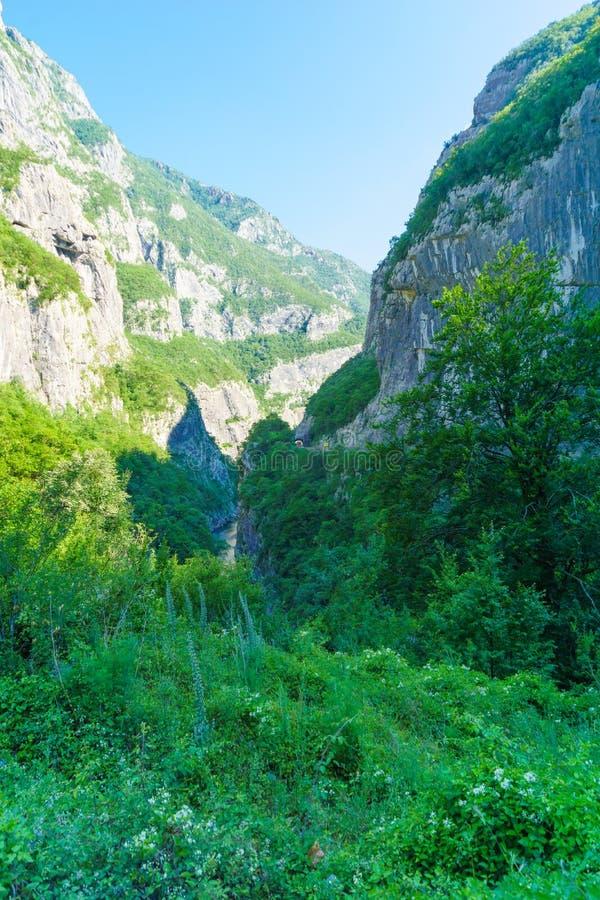 Moraca河和峡谷 库存照片