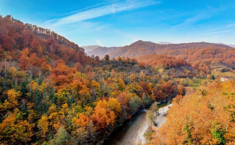 Moraca-Fluss im Herbst, Montenegro lizenzfreie stockbilder