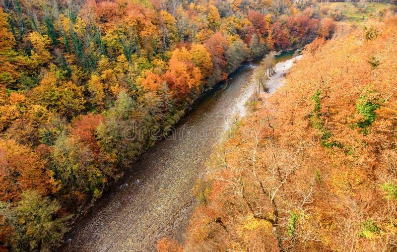 Moraca-Fluss im Herbst, Montenegro stockbild