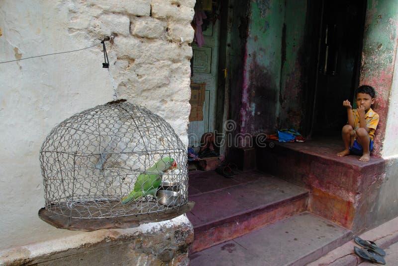Moradores do precário de Kolkata-India fotos de stock