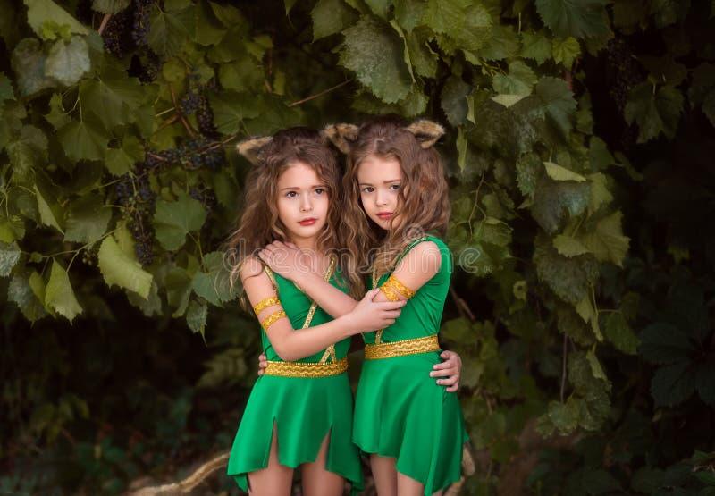 Moradores pequenos da floresta imagem de stock