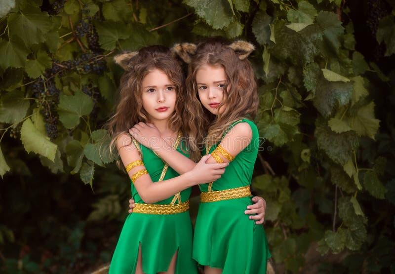 Moradores pequenos da floresta imagens de stock royalty free