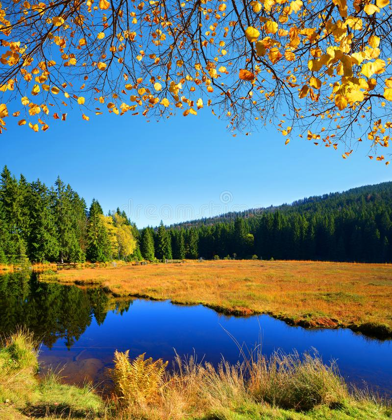 Moraine湖克莱纳Arbersee在德国 免版税库存图片