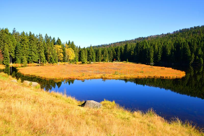 Moraine湖国家公园巴法力亚forestGermany的克莱纳Arbersee 免版税库存图片