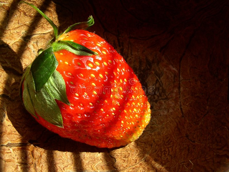 Download Morango imagem de stock. Imagem de alimento, lifestyle - 107453