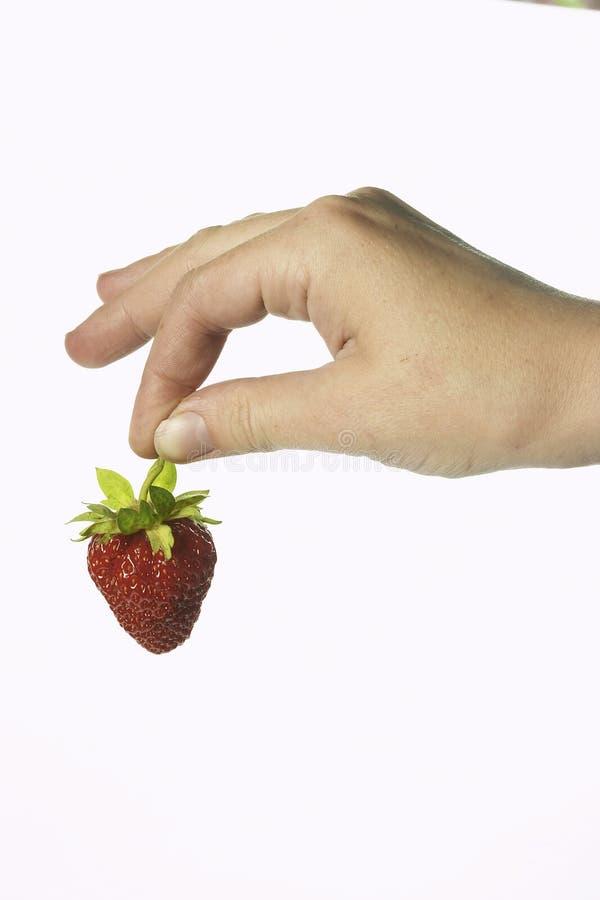 Morango e mão imagem de stock