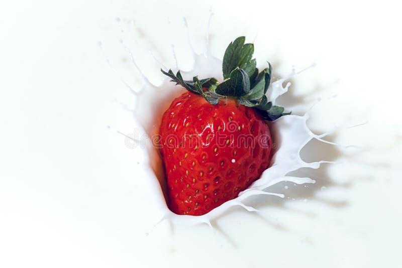Download A Morango Espirra No Leite Liso Imagem de Stock - Imagem de strawberry, sombra: 107529181