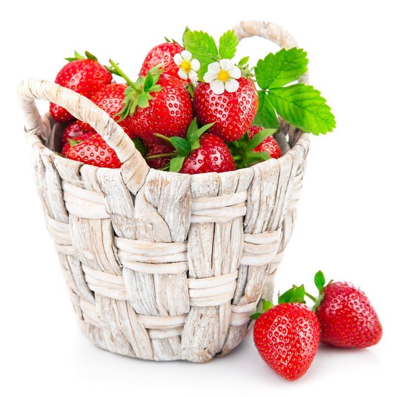 Morango fresca da cesta com folha e a flor verdes imagem de stock royalty free