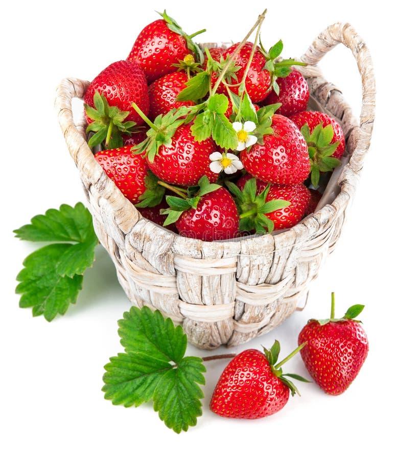 Morango fresca da cesta com folha e a flor verdes fotografia de stock royalty free