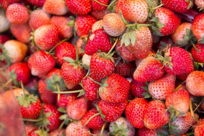 Morango fresca no mercado do alimento imagem de stock royalty free