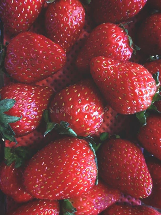 morangos, arranjo do fruto em uma ordem obscura, em um recipiente com um fundo vermelho fotos de stock royalty free