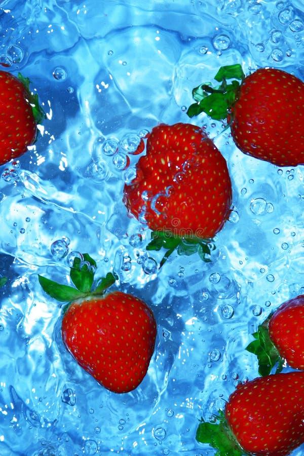 Morangos frescas na água fotos de stock royalty free
