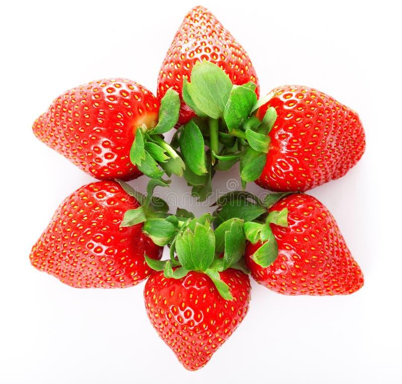 Morangos frescas suculentas brilhantes foto de stock royalty free