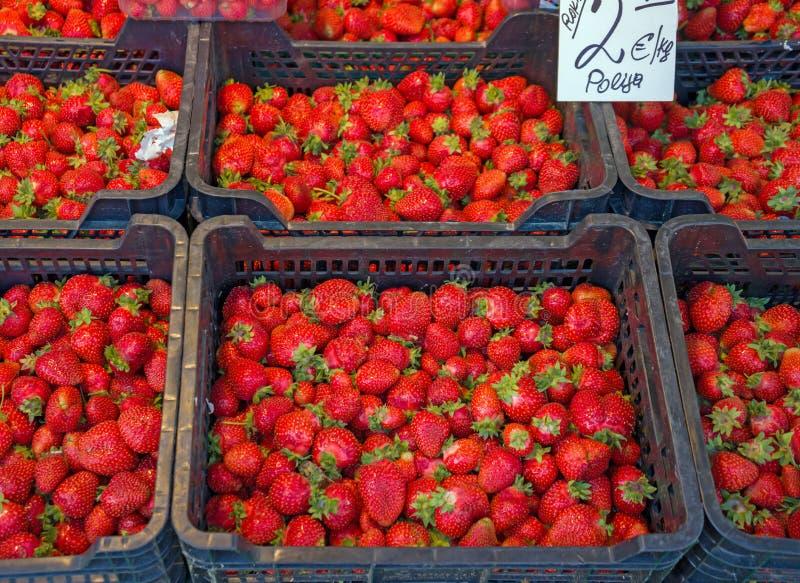 Morangos vermelhas frescas nas cestas prontas para a venda no mercado, fundo das morangos recentemente colhidas, foco selecionado fotografia de stock