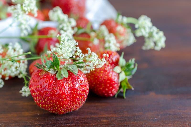 Morangos vermelhas maduras e flores selvagens brancas no verão imagens de stock