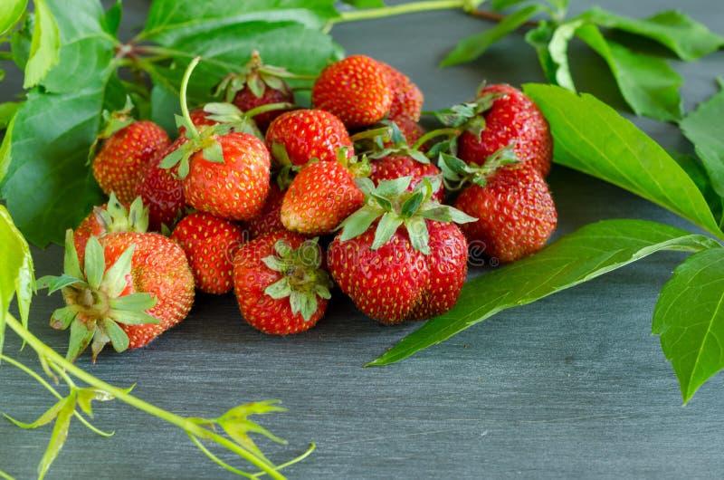 Morangos vermelhas maduras frescas na tabela cinzenta imagem de stock
