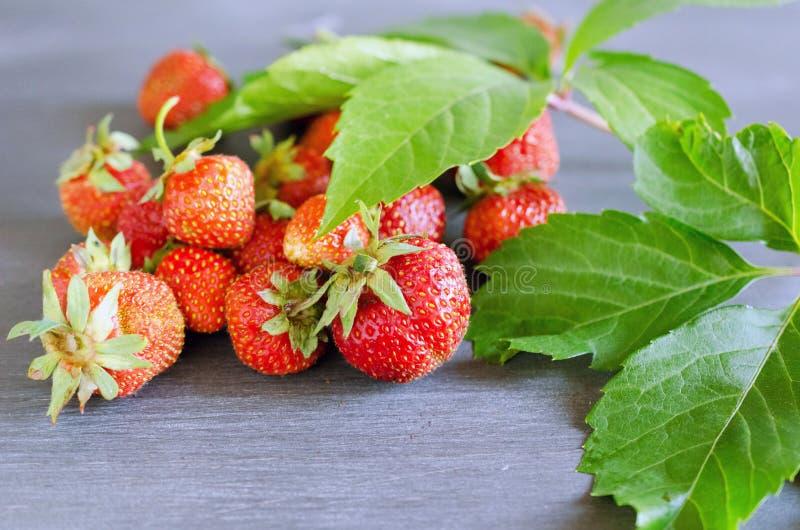 Morangos vermelhas maduras frescas na tabela cinzenta Dieta, saudável, vegetariano fotos de stock royalty free