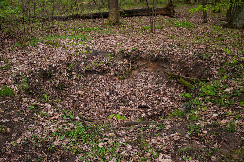 The Morasko meteorite nature reserve. Is located in Morasko, on the northern edge of the city of Poznań, Poland. It contains seven meteor craters. The stock photos