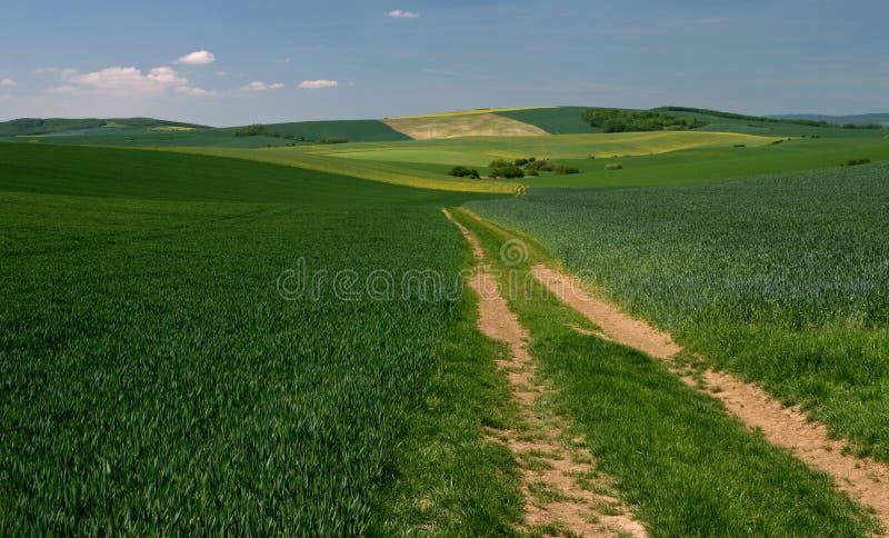 Download Moravian Fields IX stock image. Image of geometry, undulation - 9457257