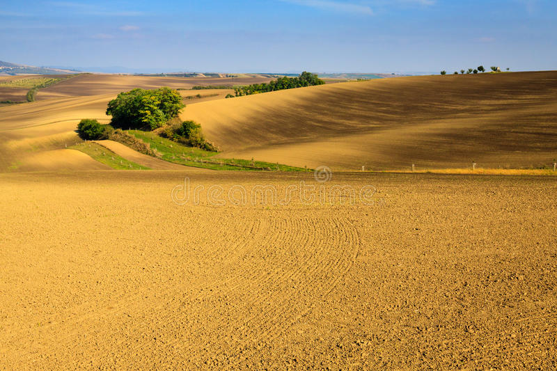 Moravian Fields. Panoramic view of cultivated field in South Moravia, Czechia. Beautiful wavy fields royalty free stock photography