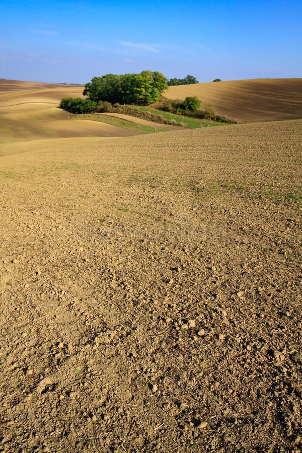 Moravian Fields. Panoramic view of cultivated field in South Moravia, Czechia. Beautiful wavy fields stock photo