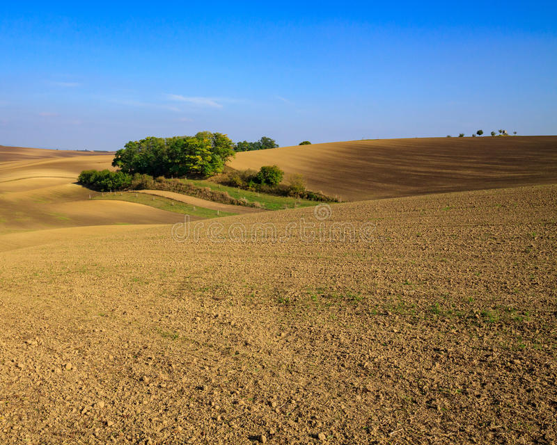 Moravian Fields. Panoramic view of cultivated field in South Moravia, Czechia. Beautiful wavy fields stock photography