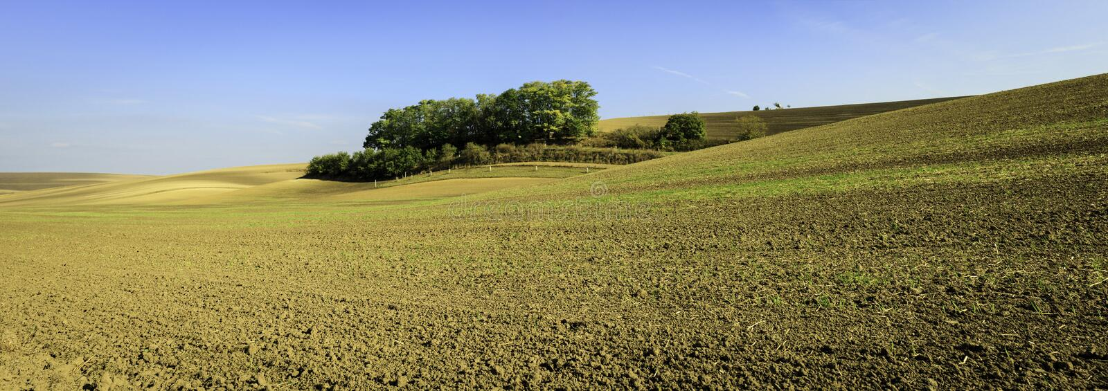 Moravian Fields. Panoramic view of cultivated field in South Moravia, Czechia. Beautiful wavy fields royalty free stock photo