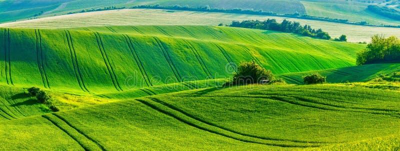 Moravian rullningslandskap royaltyfri fotografi