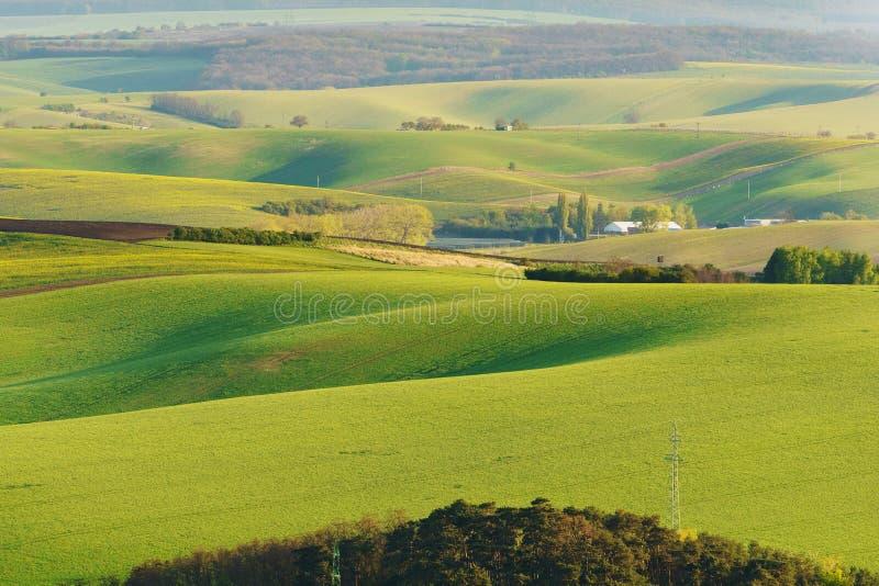 Moravian Tuscany royaltyfri bild