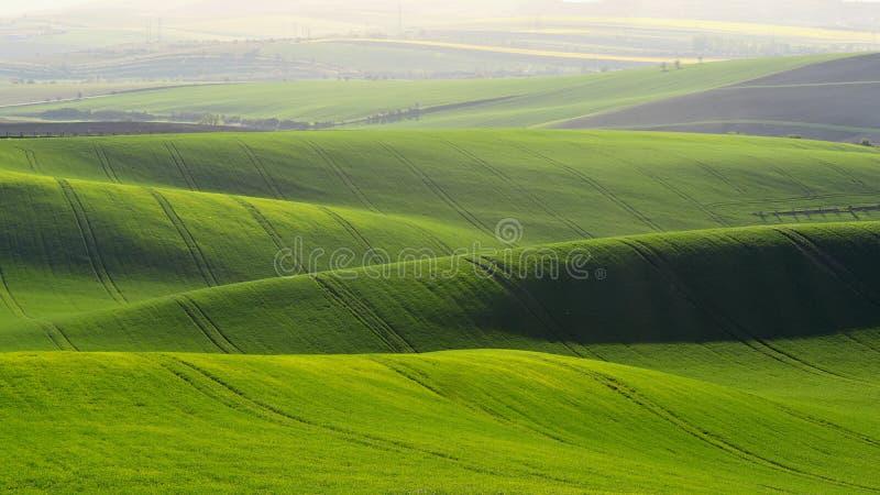 Morawski Tuscany Piękny wiosna krajobraz w południowym Moravia blisko Kyjov miasteczka Republika Czech - Europa obrazy stock