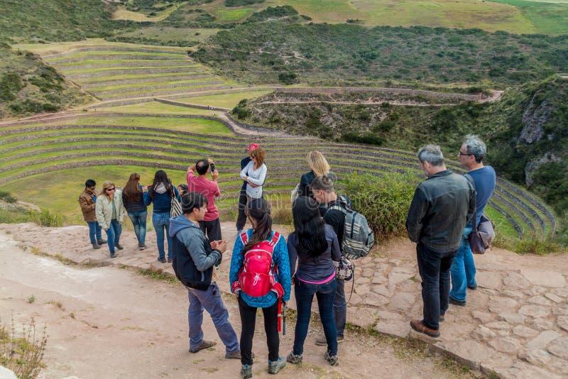 Moray agrícola redondo dos terraços foto de stock royalty free
