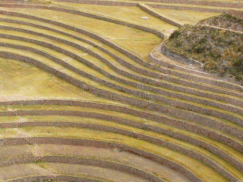 Moray, Cusco, Pérou. photo stock