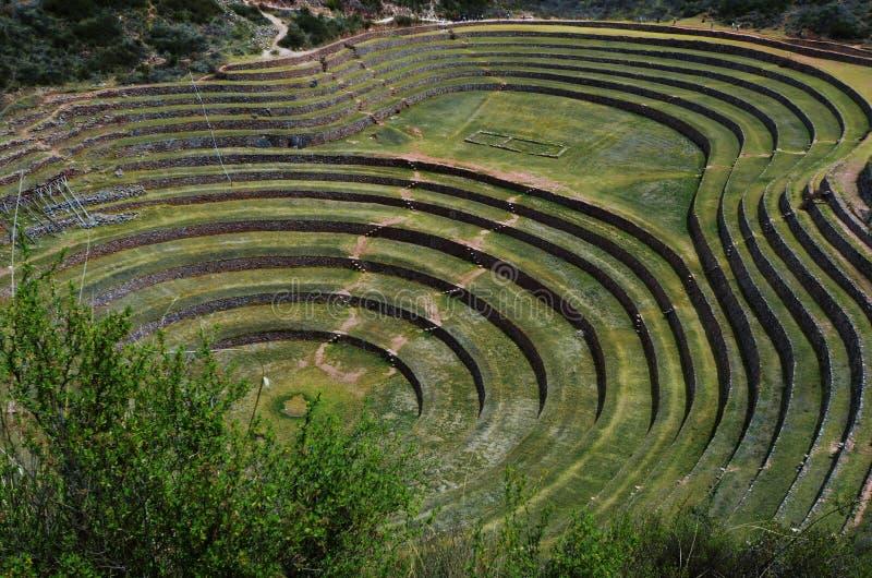 Moray - de archeologische plaats van Inca in de Heilige Vallei van Peru royalty-vrije stock foto's