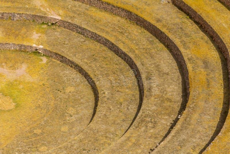 Moray fördärvar Cuzco Peru arkivfoton