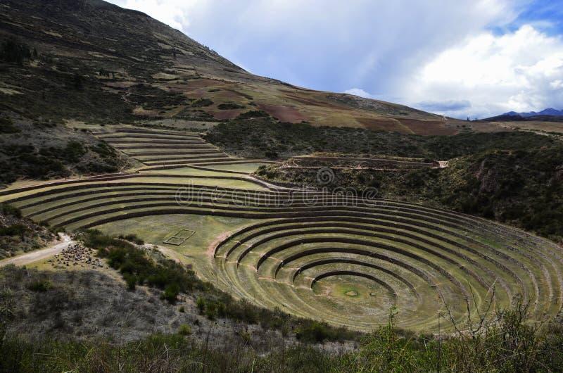 Moray - local arqueológico do Inca no vale sagrado do Peru fotografia de stock