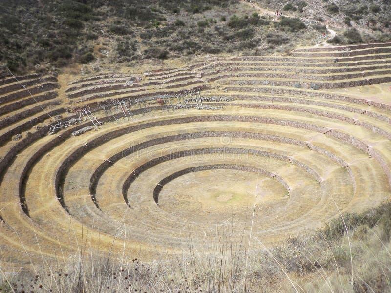 Moray Muyu Uray, distrito de Maras, Cusco Terraços agrícolas fotos de stock